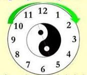 yin yang berputar