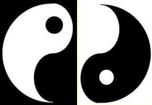 yin yang sisi