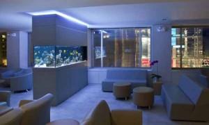 feng shui aquarium rumah