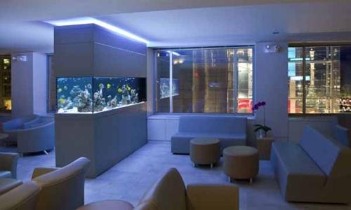 Energi Aquarium Dalam Feng Shui | Tionghoa.INFO