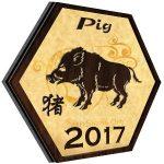 Ramalan Shio Babi Tahun 2017