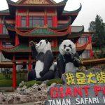 Rumah Panda Indonesia, dan Sejarah Panjang Diplomasi Panda Tiongkok di Dunia