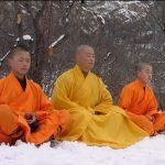 Kungfu; Selain Untuk Ilmu Beladiri, Ini 5 Tujuan Kungfu Lainnya