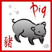 Ramalan Shio Babi 2021 : Jodoh, Usaha, Keuangan, Kesehatan dan Fengshui